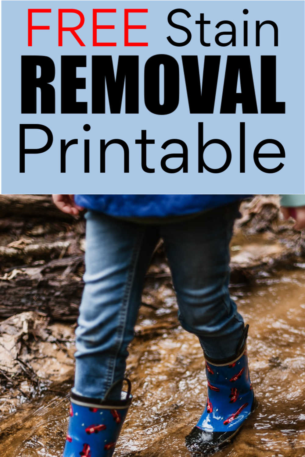 3 Free Stain Removal Printable Cheat Sheets and Tips/Tricks