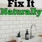 clean white sink and a cactus in front of subway tile with text that reads slow drain? Fix it naturally