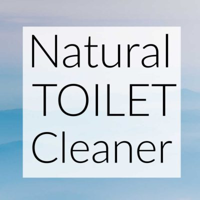 Best Homemade and DIY Natural Toilet Cleaners