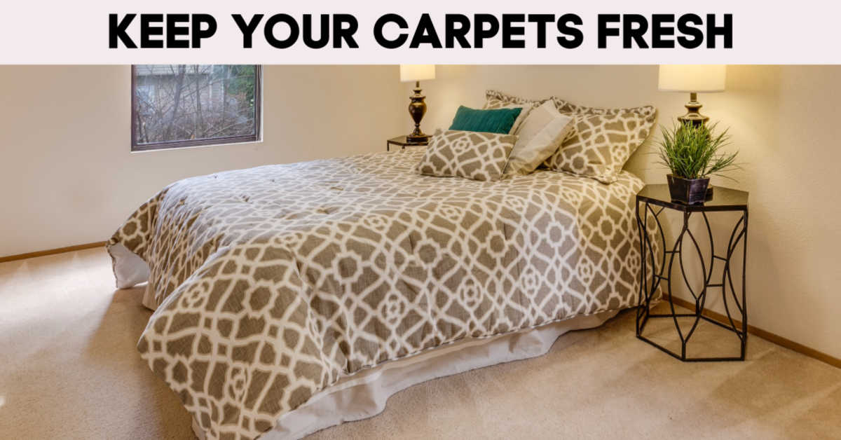 bed on carpeting and banner that reads keep your carpets fresh with carpet gliders for steam mops
