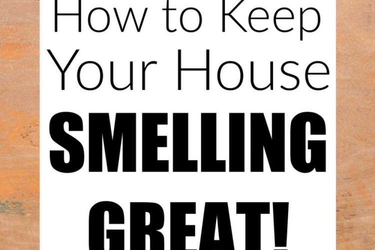 text box that reads how to keep your house smelling great
