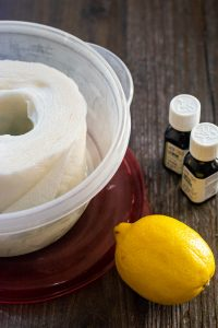 paper towels in a plastic container and lid with DIY disinfectant